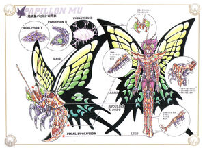 Papillon Surplice