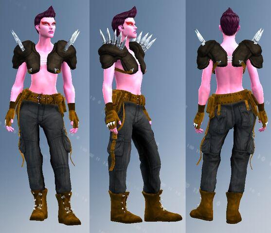 File:TYP road barbarian suit.jpg