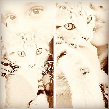 File:Ariana wants a cat.jpg
