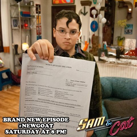 File:Kid trying to evict Sam and Cat - NewGoat promo pic.jpg