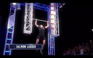 -37- Salmon Ladder
