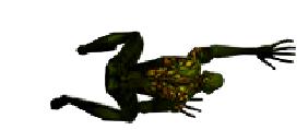 Toxic Necro Spawn