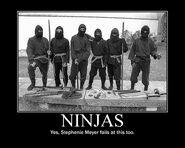 Motiv - smeyer ninja fail