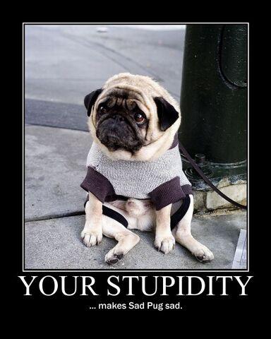 File:Motiv - stupidity sad pug.jpg