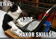 L33t haxor skills