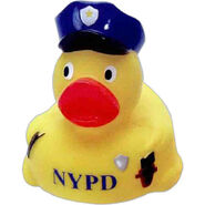 Police duck