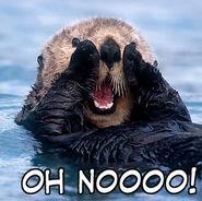 Nooooooo otter
