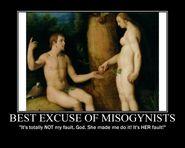 Motiv - misogynist excuse