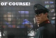 Of Course - m bison