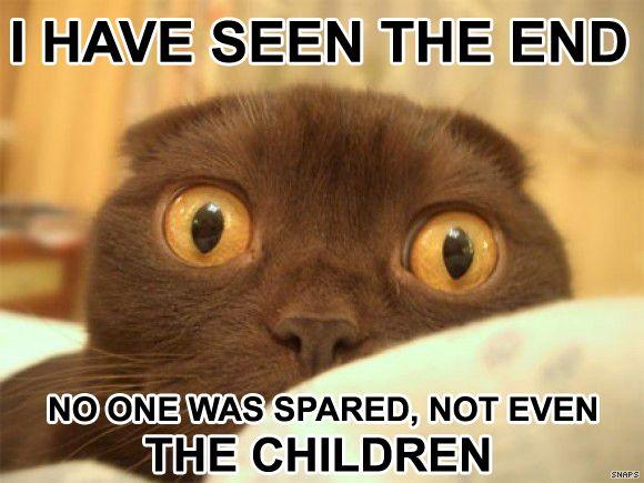 File:Doom Cat.jpg