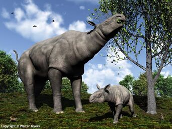 Paraceratherium and child 600