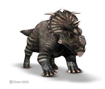 Pachyrhinosaur1