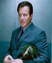 Hoffman Teddy