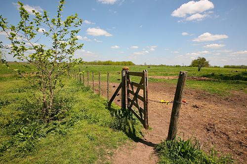 File:The Farm Gate.jpg