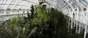 Kew gardens greenhouse1