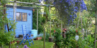 International Kitchen Garden Day
