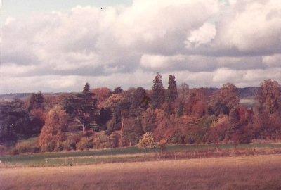 File:Autumn1.jpg