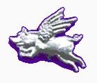 File:FlyingPig.jpg