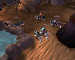 Moonguard in Silithus (2)