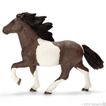 File:Icelandic Stallion.jpg