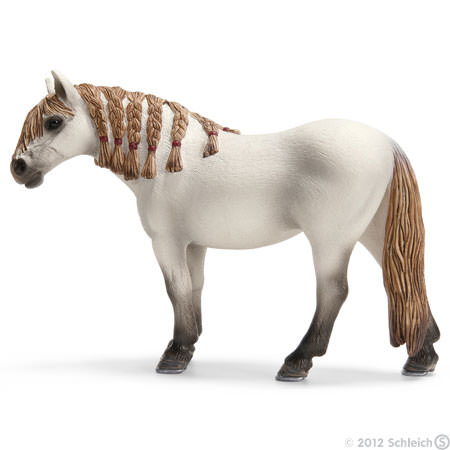 File:Andalusian Mare.jpg