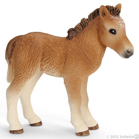 File:Dartmoor Foal.jpg