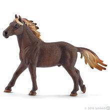 Mustang Stallion 2016