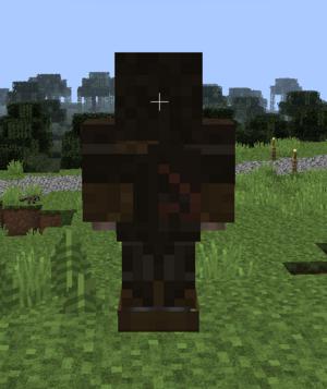 Assassins armor back