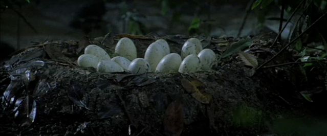 File:Nest 02.png