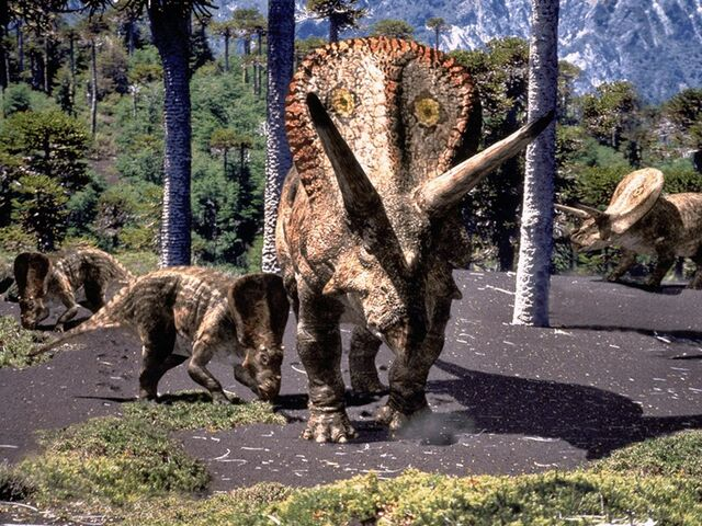 File:Torosaurus and juvenille.jpg
