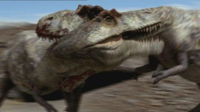 File:Tyrannosaurus Fight.jpg