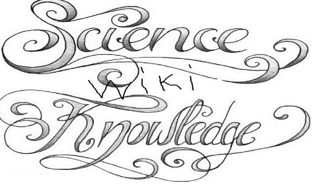 File:Tattoo science knowledge.jpg