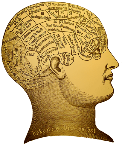 File:Phrenology.png