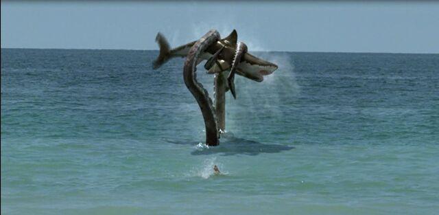 File:S-11 Kills Shark.JPG