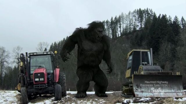 File:Bigfoot7.jpg
