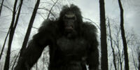Bigfoot (character)/Gallery
