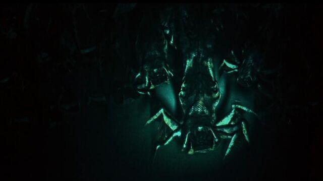 File:Legion Spawns.jpg