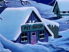 Winterhaven Pet Shop