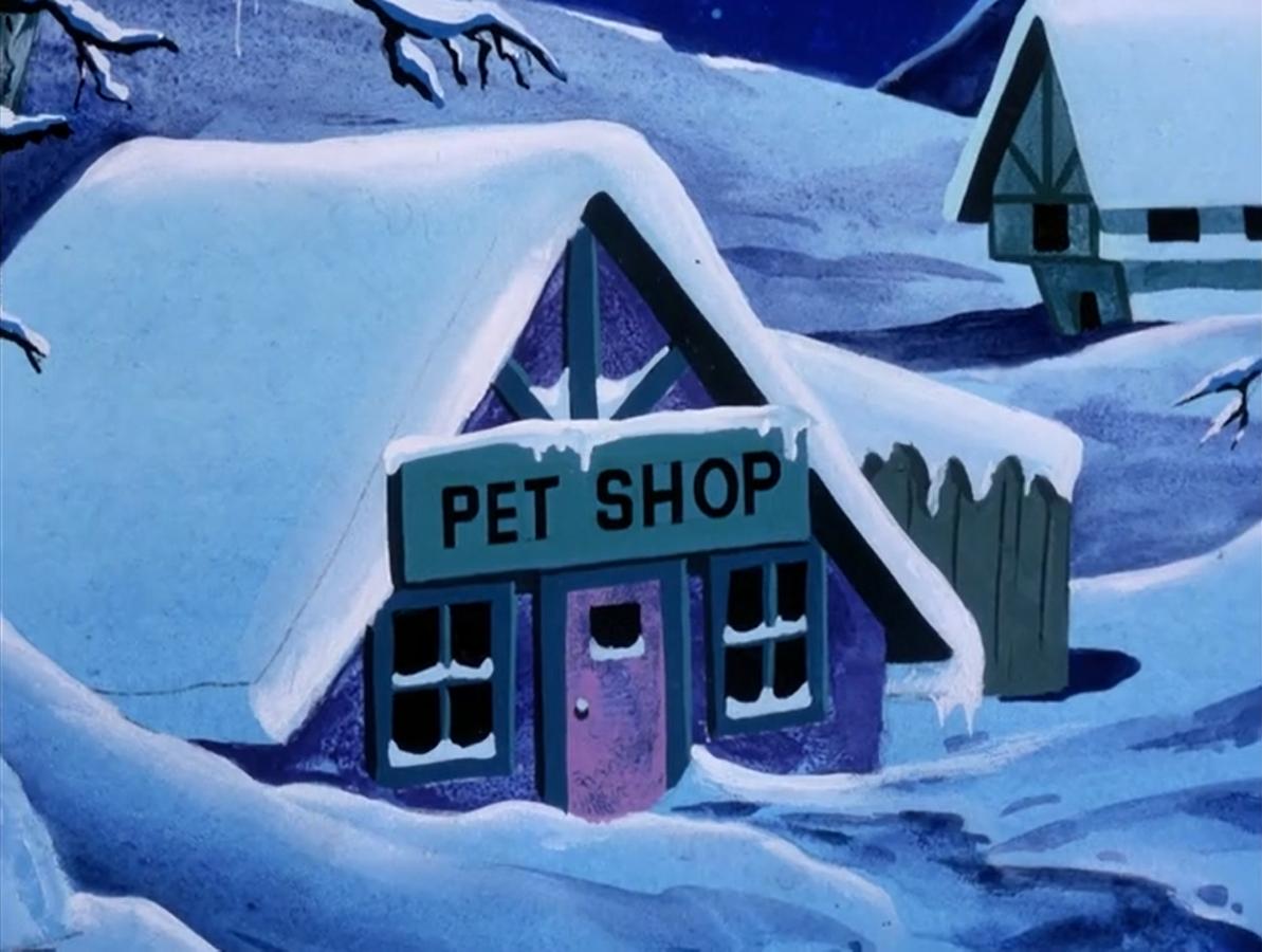 File:Winterhaven Pet Shop.png