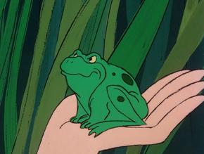 Frog (Mamba Wamba and the Voodoo Hoodoo)