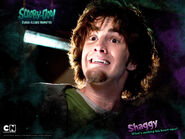 Shaggy LM promo card