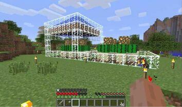 Cactus farm1