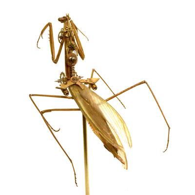 File:Clockwork mantise.jpg