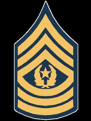 File:CommandSergeantMajor.png