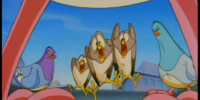 Noodles and his Sparrows (Animaniacs)