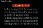 Tai Seng Video Marketing Warning Screen in Vietnamese (1994-1996)