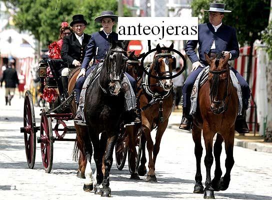 File:Anteojeras.jpg