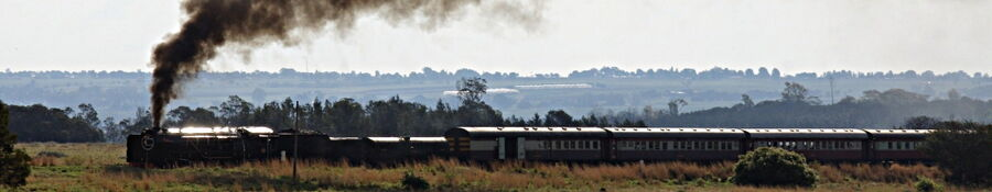 Steam locomotive joburg