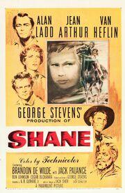 Shane xxlg