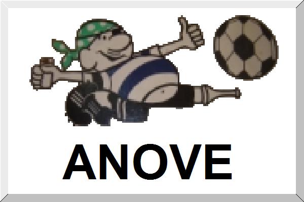 File:Bandeirinha Anove.png